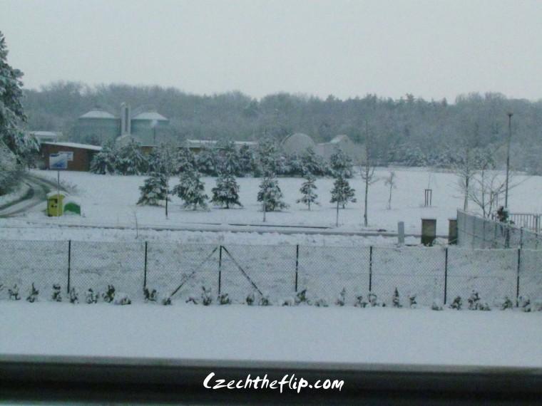 snow spring5